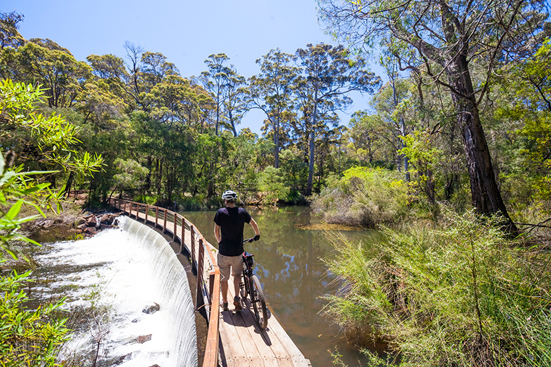 Mountain biking on The Pines Trails, Margaret River